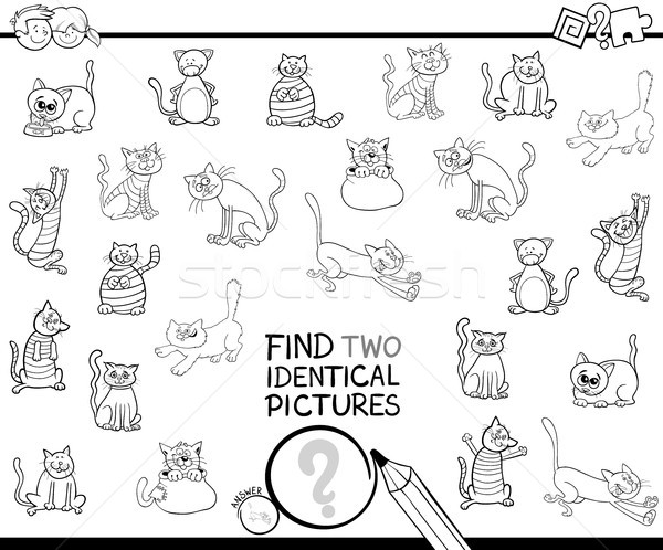 find two identical cat pictures coloring book Stock photo © izakowski