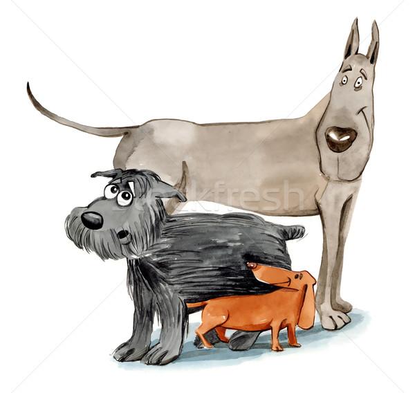 три различный собаки иллюстрация Живопись Сток-фото © izakowski
