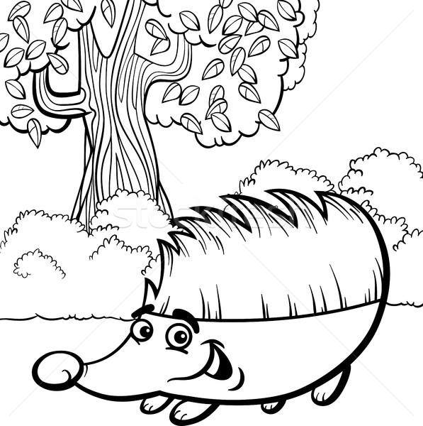 Jeż cartoon kolorowanka czarno białe ilustracja cute Zdjęcia stock © izakowski