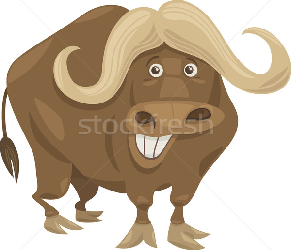 african buffalo cartoon illustration Stock photo © izakowski