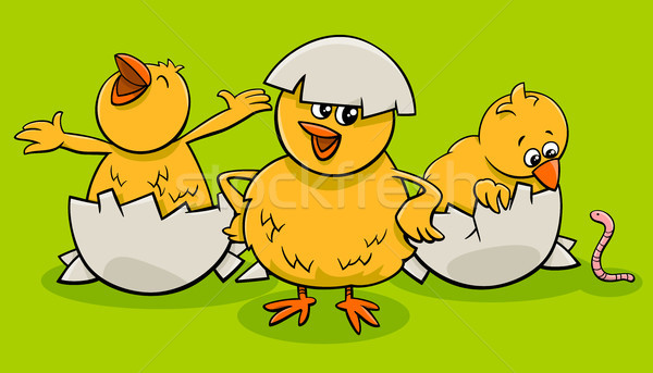cartoon little chicks hatching from eggs Stock photo © izakowski