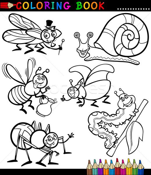 Rovarok bogarak kifestőkönyv feketefehér oldal rajz Stock fotó © izakowski