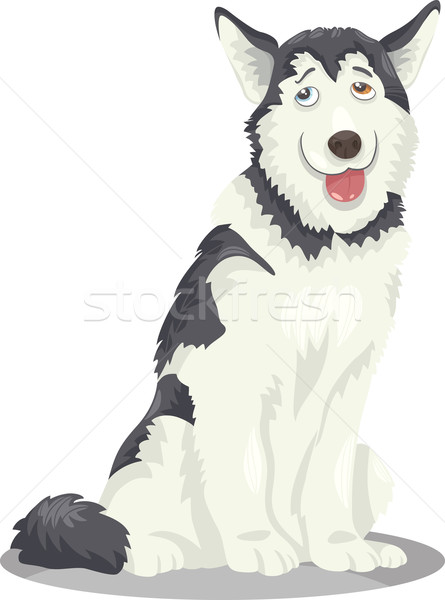husky or malamute dog cartoon Stock photo © izakowski
