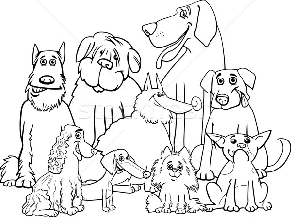 purebred dogs coloring page Stock photo © izakowski