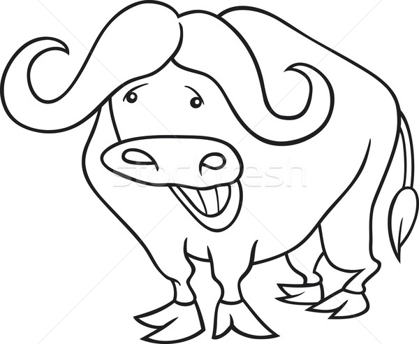 african buffalo for coloring book Stock photo © izakowski