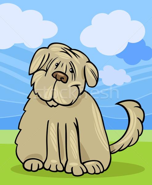 Kócos terrier kutya rajz illusztráció vicces Stock fotó © izakowski