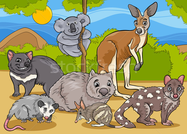 marsupials animals cartoon illustration Stock photo © izakowski