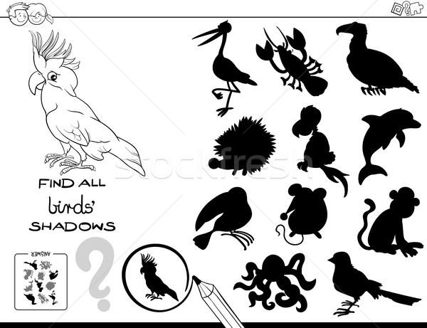 Sombra educativo juego aves color libro Foto stock © izakowski