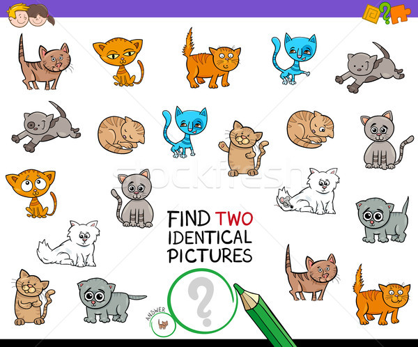 find two identical kitten pictures game for kids Stock photo © izakowski