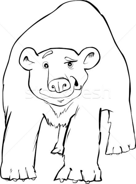 polar bear coloring page Stock photo © izakowski