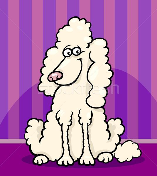 Poodle cão desenho animado ilustração engraçado Foto stock © izakowski