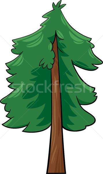 cartoon illustration of conifer tree Stock photo © izakowski