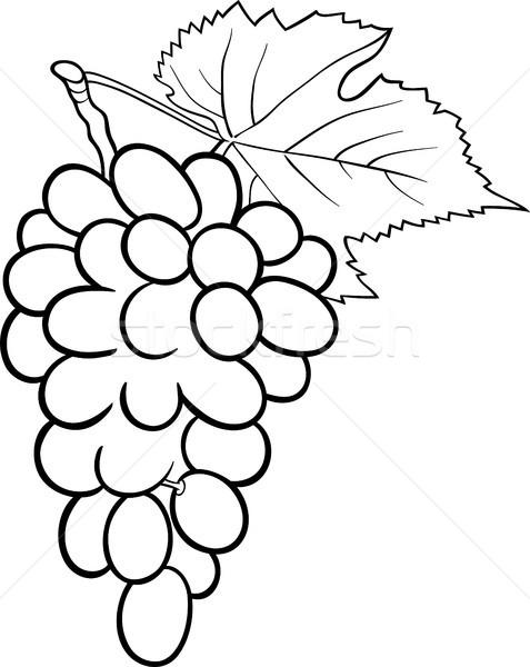 grapes illustration for coloring book Stock photo © izakowski