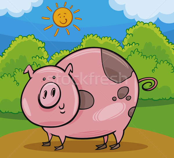pig livestock animal cartoon illustration Stock photo © izakowski