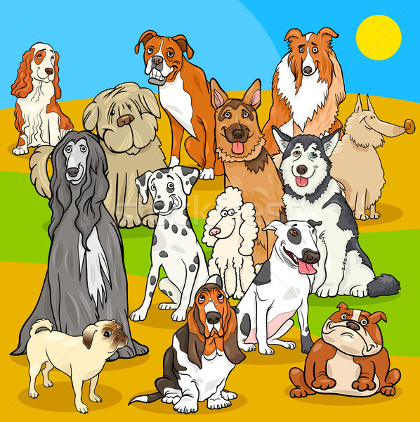 pedigree dogs cartoon characters group Stock photo © izakowski