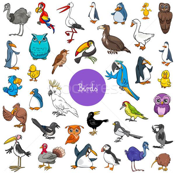 Stock photo: cartoon birds animal characters big set