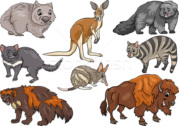 wild animals set cartoon illustration Stock photo © izakowski