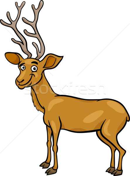 wapiti deer cartoon illustration Stock photo © izakowski