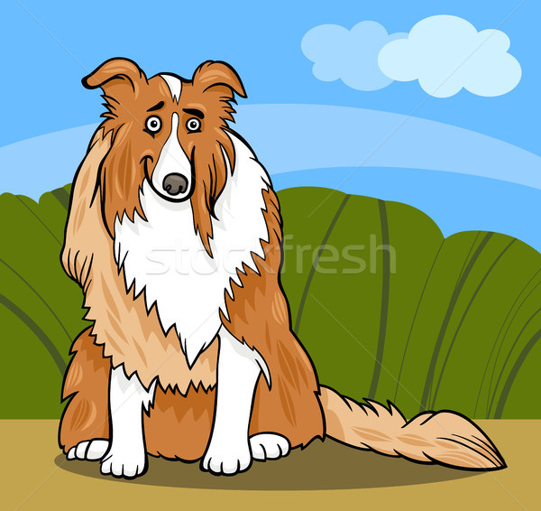 collie purebred dog cartoon illustration Stock photo © izakowski