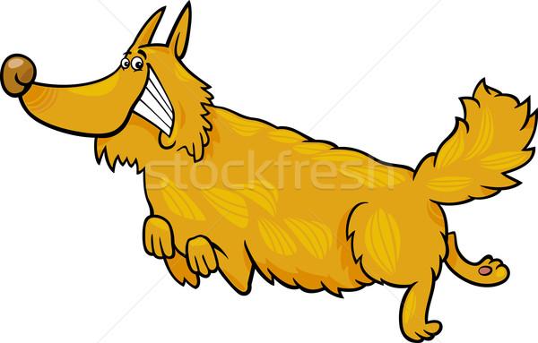 happy shaggy running dog Stock photo © izakowski