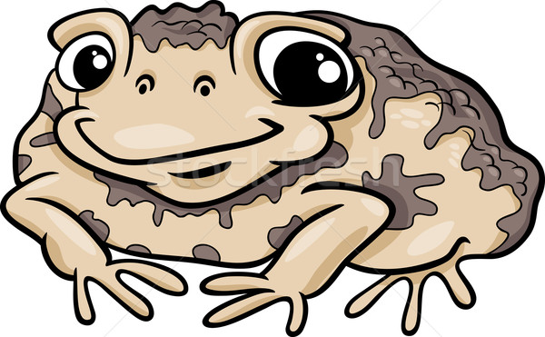 toad amphibian cartoon illustration Stock photo © izakowski