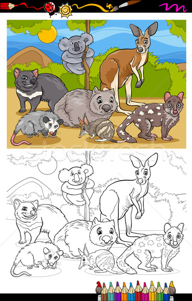 marsupials animals cartoon coloring book Stock photo © izakowski