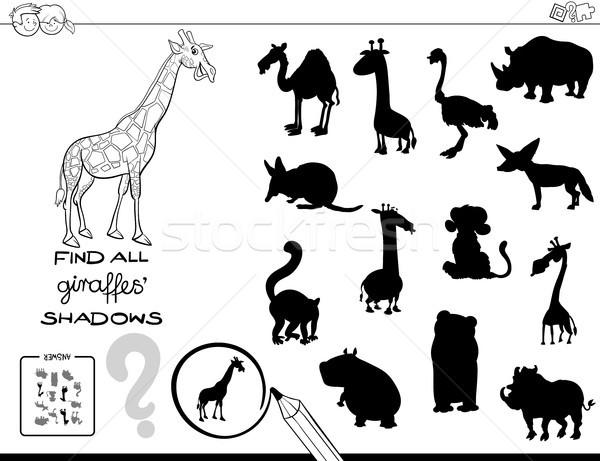 árnyék játék zsiráfok szín könyv feketefehér Stock fotó © izakowski