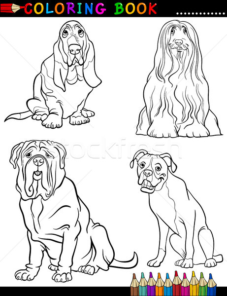 Stock photo: Cartoon purebred Dogs Coloring Page