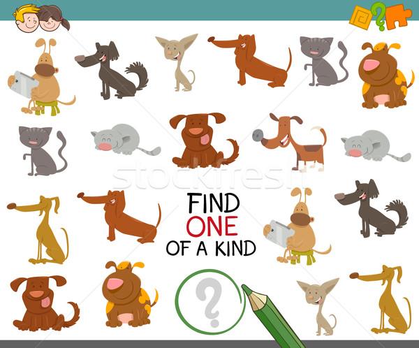 one of a kind with dogs Stock photo © izakowski
