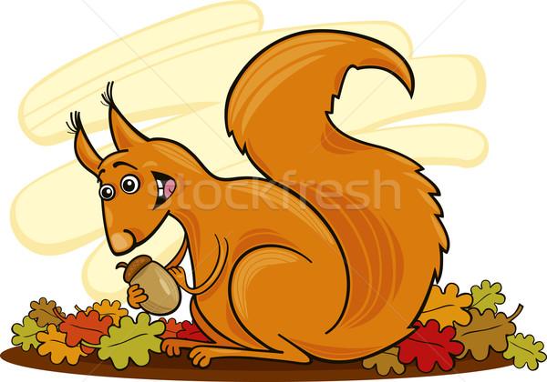 Squirrel with nut Stock photo © izakowski