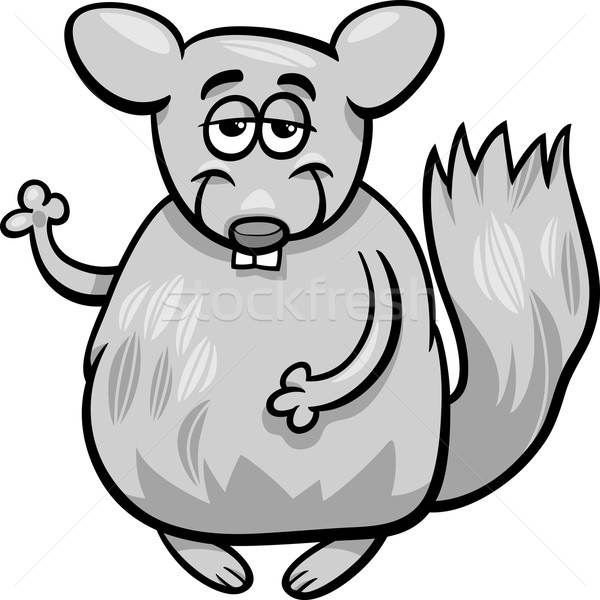 Drôle chinchilla cartoon illustration animaux personnage Photo stock © izakowski