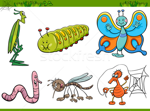 Photo stock: Cartoon · insecte · illustration · insectes