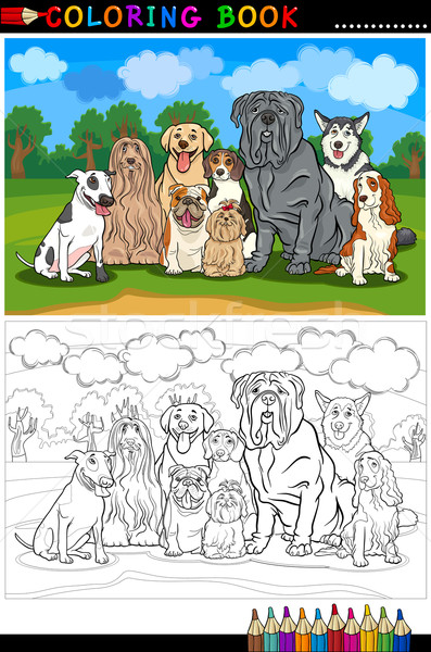 Stock photo: purebred dogs cartoon for coloring book