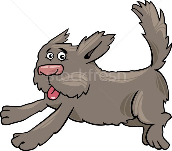 Fut kócos kutya rajz illusztráció vicces Stock fotó © izakowski