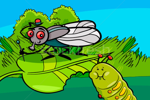 fly and caterpillar cartoon insect characters Stock photo © izakowski