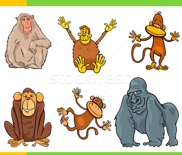 monkeys animal characters cartoon set Stock photo © izakowski