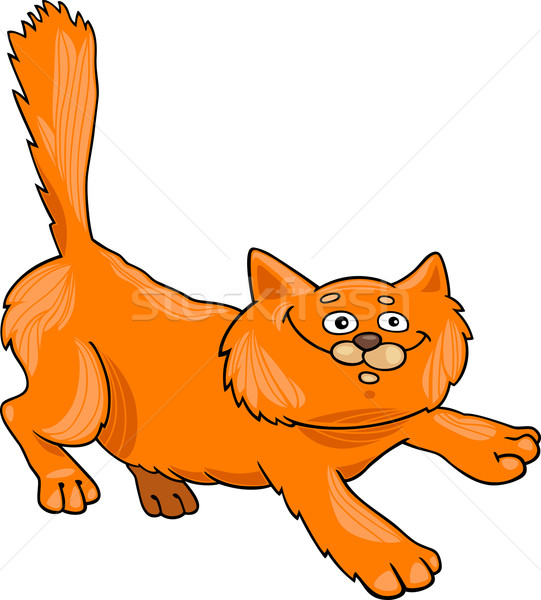 running red fluffy cat Stock photo © izakowski