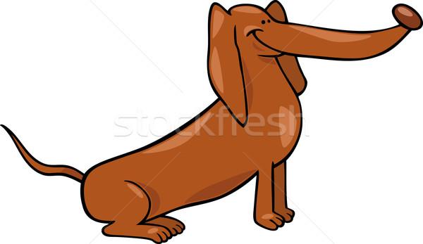 Bonitinho bassê cão desenho animado ilustração engraçado Foto stock © izakowski