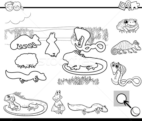 Cartoon spel zwart wit illustratie onderwijs activiteit Stockfoto © izakowski