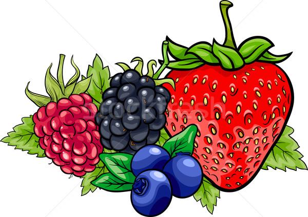 Berry frutti cartoon illustrazione quattro come Foto d'archivio © izakowski
