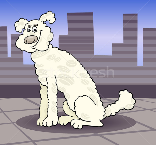 Caniche chien ville cartoon illustration cute Photo stock © izakowski