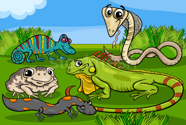 reptiles and amphibians group cartoon Stock photo © izakowski