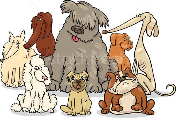 cartoon purebred dogs group Stock photo © izakowski