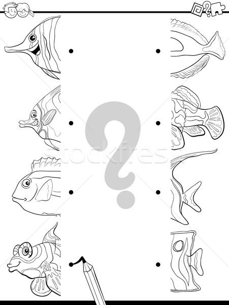 összeillő feketefehér rajz illusztráció oktatási játék Stock fotó © izakowski