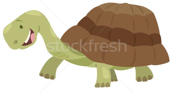 Cute tartaruga animale carattere cartoon illustrazione Foto d'archivio © izakowski