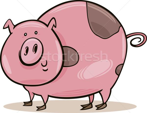 Farm animals: spotted pig Stock photo © izakowski