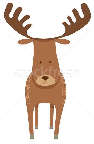 Cervo Moose carattere cartoon illustrazione Foto d'archivio © izakowski