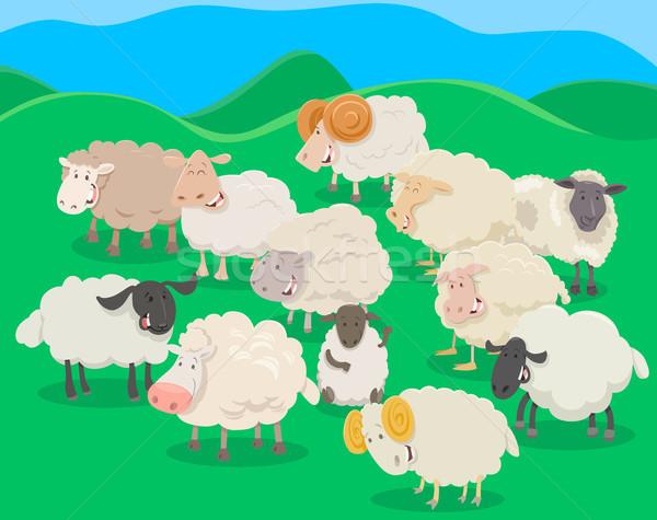 flock of sheep cartoon illustration Stock photo © izakowski