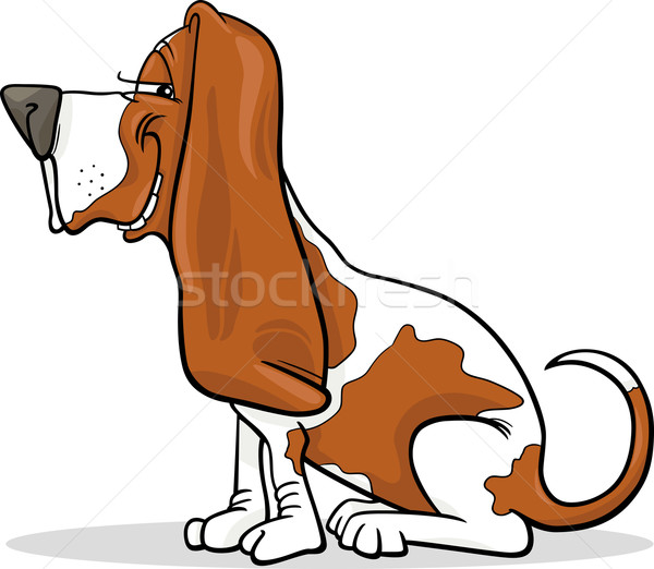 Jachthond hond cartoon illustratie grappig Stockfoto © izakowski