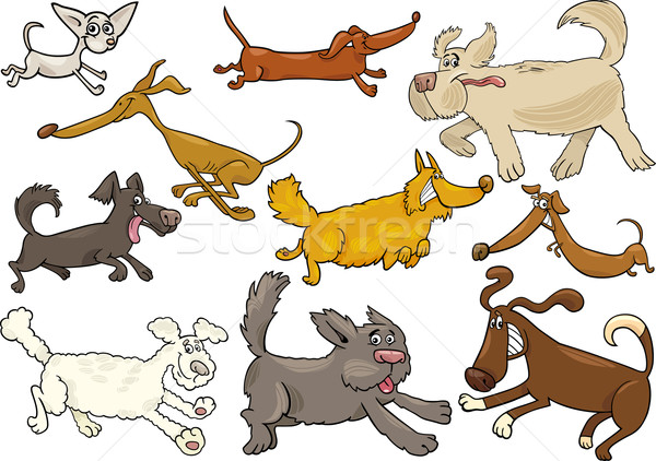 cartoon playful running dogs set Stock photo © izakowski